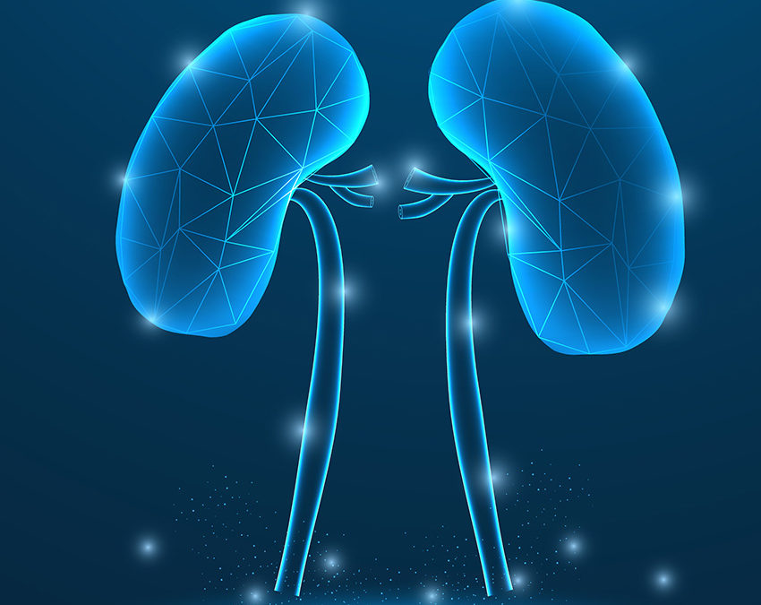 Chronic Kidney Disease, aka CKD
