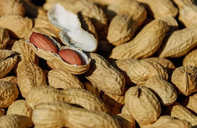 The Truth About Peanut Allergies