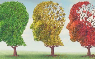 Top 3 Anti-Aging Medications
