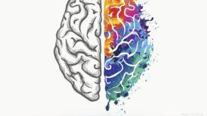 dreaming brain